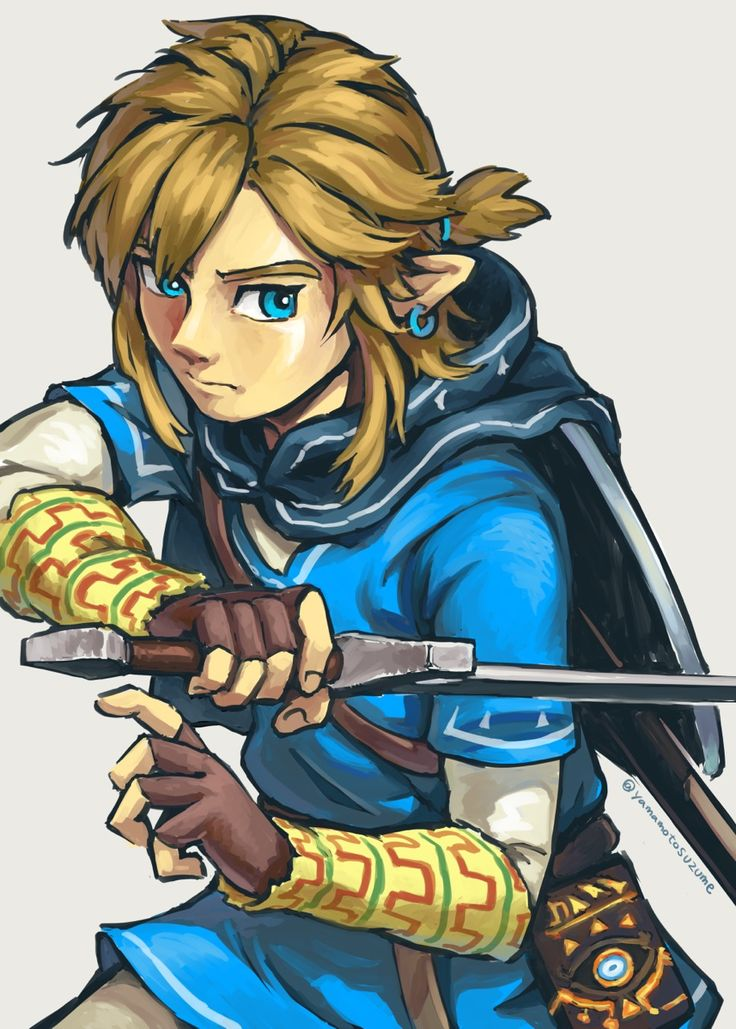 Art By Yamamotosuzume Legend Of Zelda Breath Legend Of