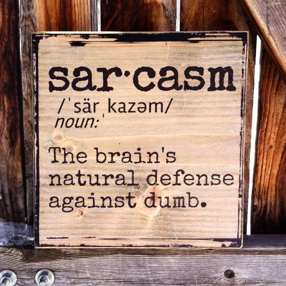 Sarcasm Dictionary Definition  Wooden Shelf by MegAndMosClubhouse