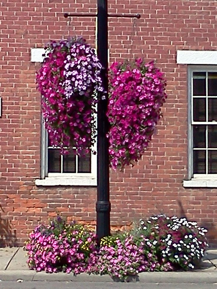 Downtown Westerville Ohio Photos I Ve Taken Pinterest