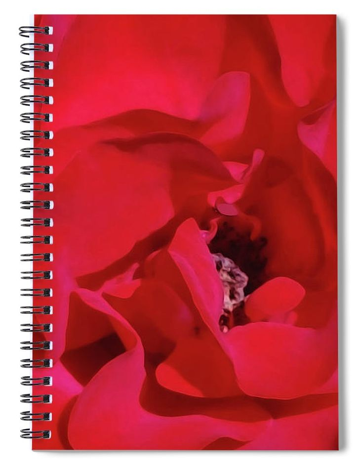 """This 6"""" x 8"""" spiral notebook features the artwork """"Rose Wine Color"""" by Jasna Dragun on the cover and includes 120 lined pages for your notes and greatest thoughts."""