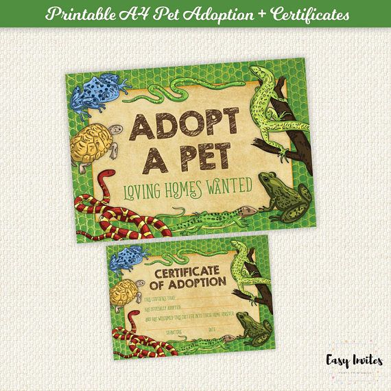 Adopt A Pet Sign Pet Adoption Signs Reptile Party Sign Adopt A Reptile Sign Reptile Birthday Party Reptile Party Printables Instant Adoption Signs Reptile Party Pet Signs