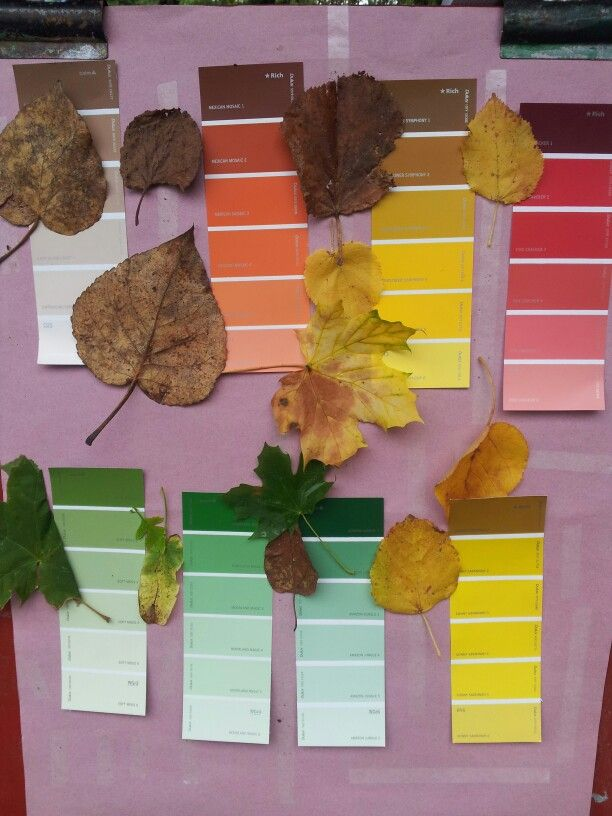 Colour matching outside with leaves