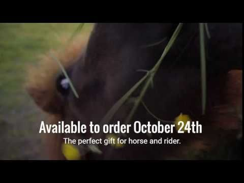 Subscription boxes for horse and rider.