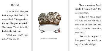 #dyslexicreader #booksfordyslexicreader #dyslexiclearner #phonics #chapterbook #dyselxiabooks books for dyslexic readers, dyslexia, orton gillingham, dyslexic learners, books for dyslexic learners, phonics, dyslexia chapter books, chapter books, phonics chapter books