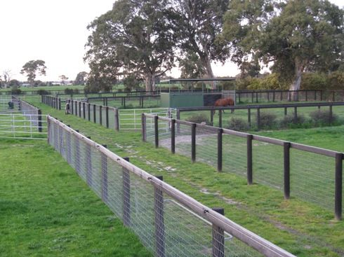 I really like this fencing. Safe, and more cost effective than 3 rail.