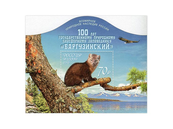 COLLECTORZPEDIA The 100th Foundation Anniversary of the Barguzinsky State Biosphere Nature Reserve