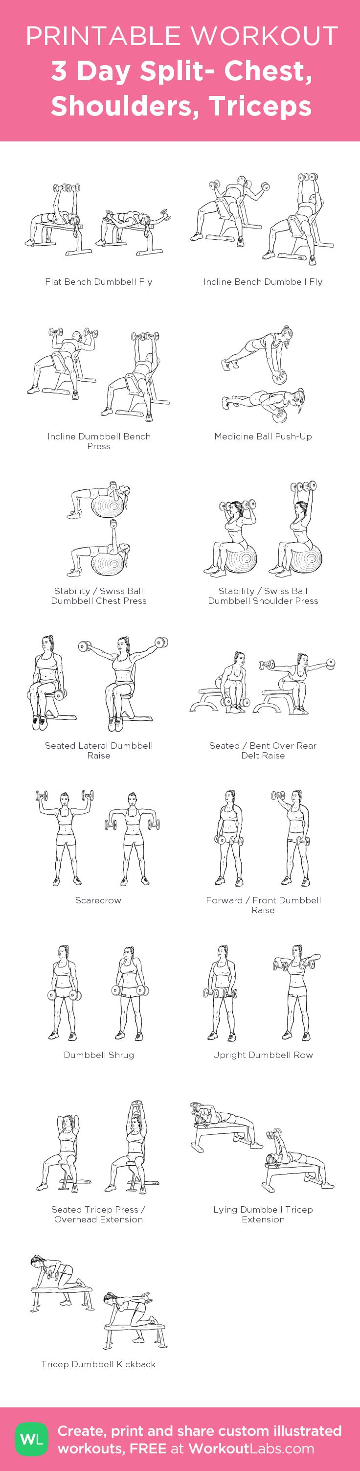 3 Day Split- Chest, Shoulders, Triceps:my visual workout created at WorkoutLabs.com • Click through to customize and download as a FREE PDF! #customworkout