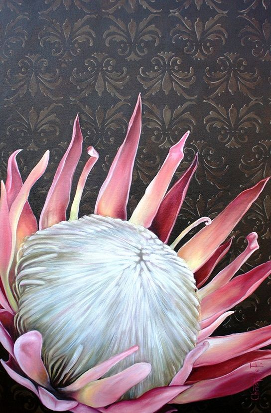 Pink king protea on brown damask background...  www.christellepretoriusart.co.za