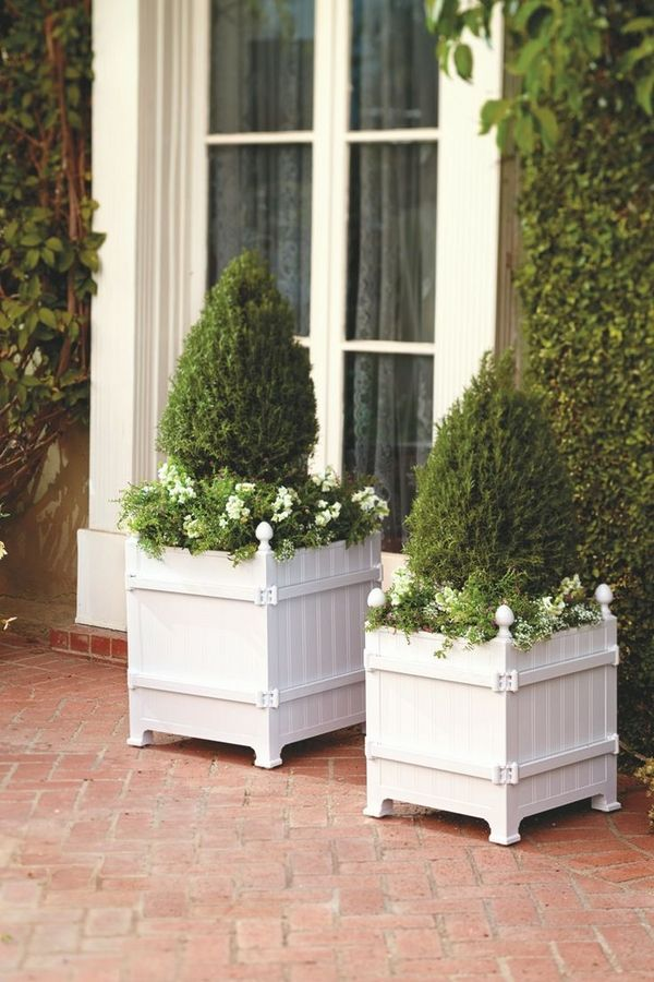 Topiary Decorating Ideas Part - 30: Contemporary Patio Decoration Ideas Boxwood Topiary White Wood Containers