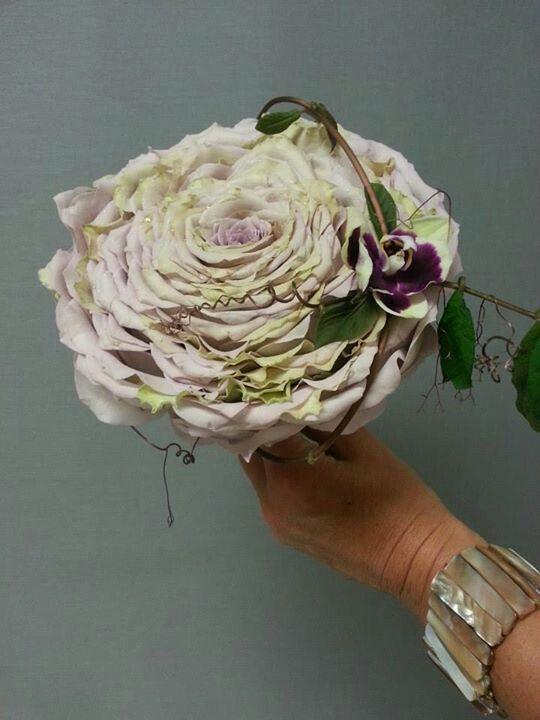 Glamelia di rosa Ipnose con diagonale di viticcio con phalenopsis viola. Meraviglioso