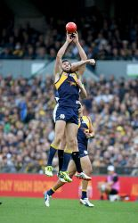 AFL Round 6. West Coast Eagles v Collingwood at Domain Stadium, Perth, WA. Jack Darling tries to take a mark.  This image and many more available to purchase at www.westpix.com.au. Picture: Ian Munro The West Australian  01/05/2016. Search for TWA-0043707 © WestPix
