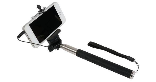 Asta Selfie - 15447 - Tecnologia ed Accessori - Euthema srl - Casalpusterlengo