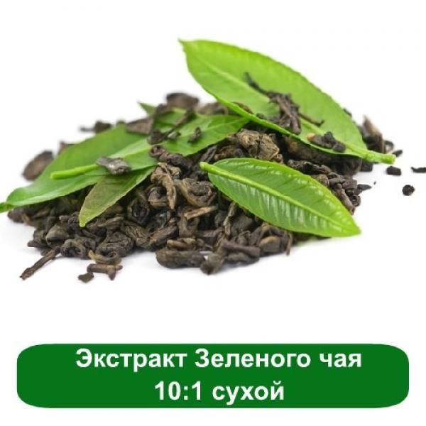 Экстракт Зеленого чая 10:1 сухой, 1 кг