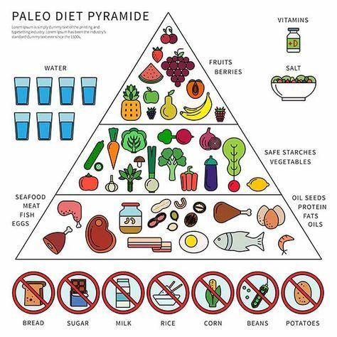 Dieta cetogenica x dieta paleo
