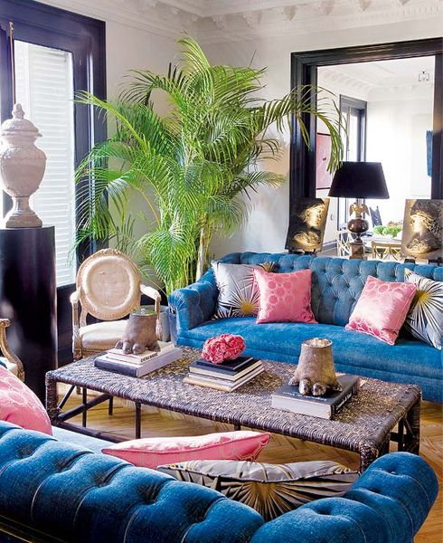 blue velvet couch pink pillow and green plant perfect