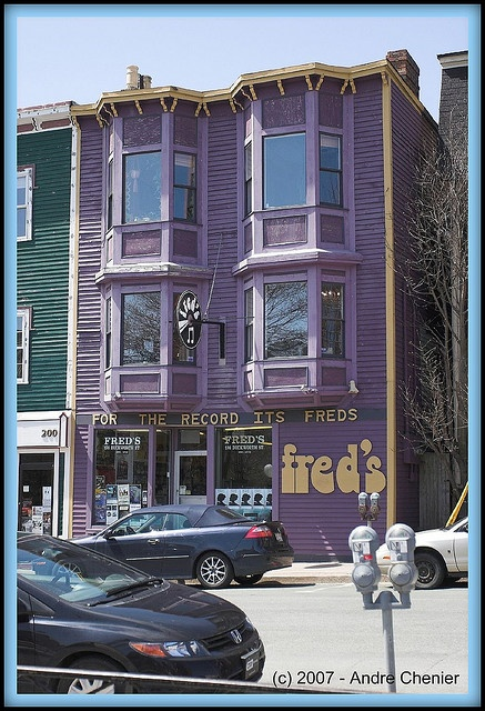 i love to live in st. john's, newfoundland because we have the best purple record store.