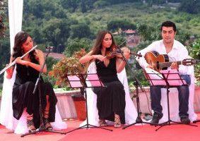 Taş Müzik Organizasyon - En İyi Bakırköy Düğün Orkestraları gigbi'de
