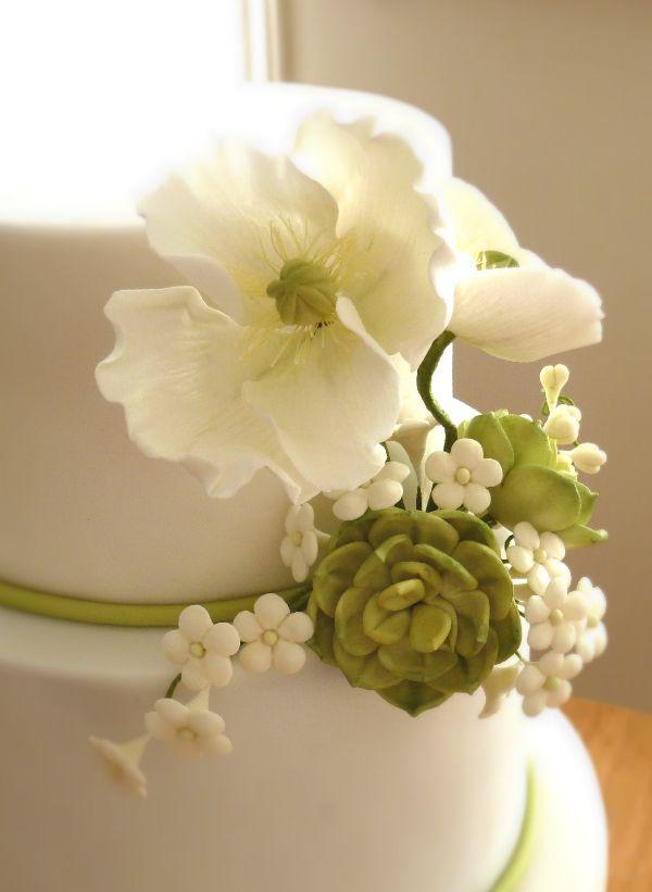 93 best Wedding cake images on Pinterest | Cake wedding, Conch ...