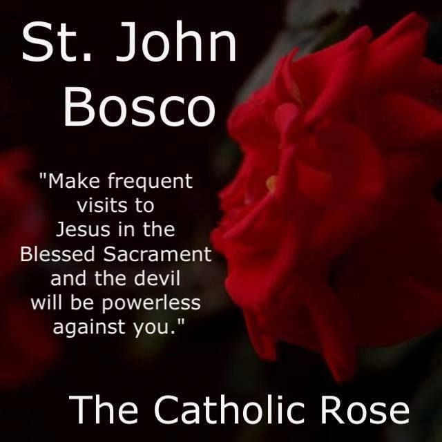 St John Bosco Quotes Education: 162 Best ADORATION Images On Pinterest