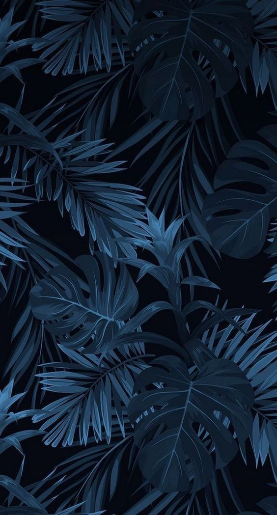 60+ BEAUTIFUL IPHONE WALLPAPERS YOU DEFINITELY LIKE – Page 31 of 62