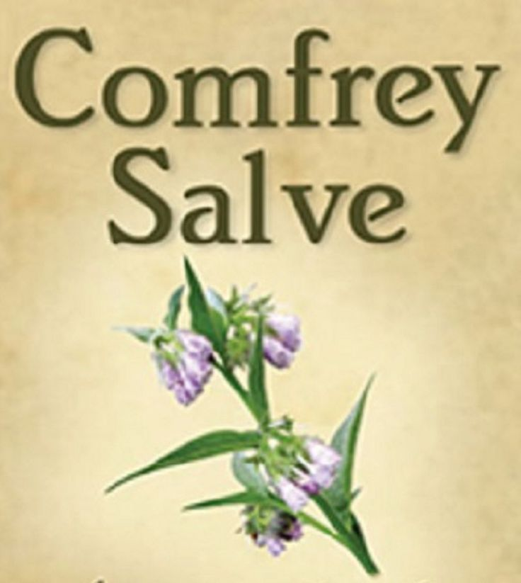 comfrey salve how to make