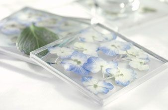 DIY Pressed flower coasters. I think this would be a great way to display flowers that the kids have picked for me.