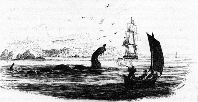 Sea Serpent From Bishop Erik Pontoppidan's 1755 work Natural History of Norway