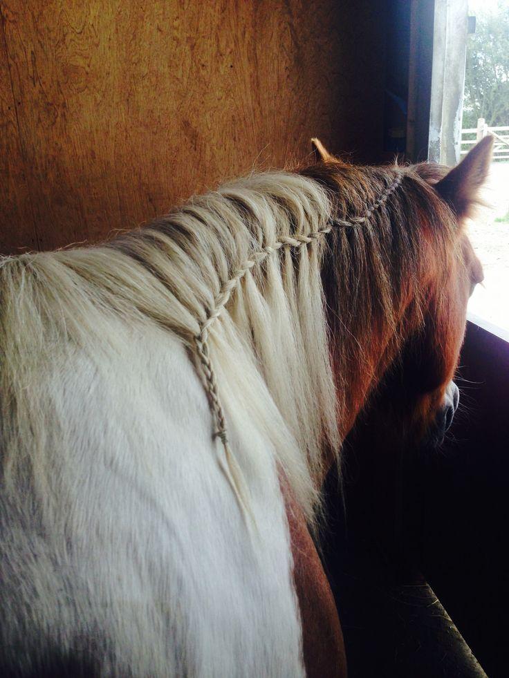 🐴waterfall braid