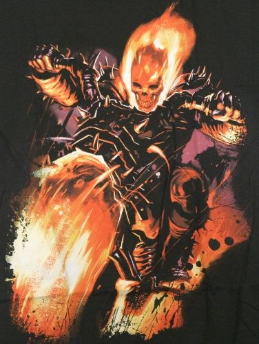 ghost rider comic pictures | ... comic book character ghost rider shown here from the marvel comic t
