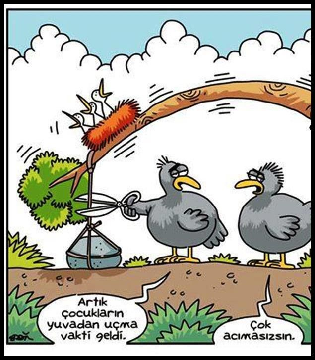 komik karikatür