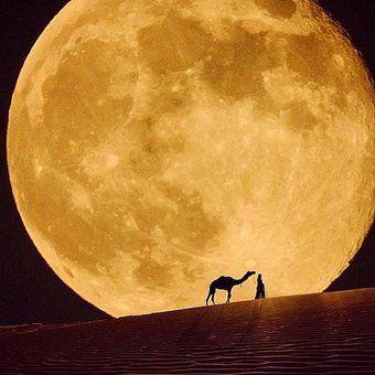 【今夜は中秋の名月】素晴らしく美しい満月の
