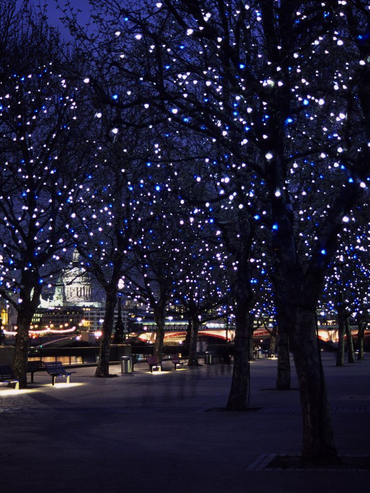 155 best outdoor lighting images on pinterest landscape lighting tree lighting workwithnaturefo