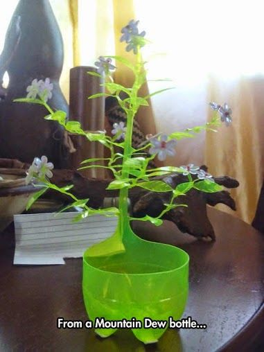 Plastic Bottle Plant Please Follow: +Interesting Things