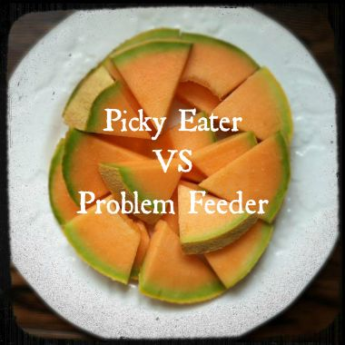 Do you wonder if your picky eater might be more of a problem eater?? After reading some of this list we determined The Toddler was a problem eater and got an evaluation. For all the Mamas struggling with mealtime check out this article!!