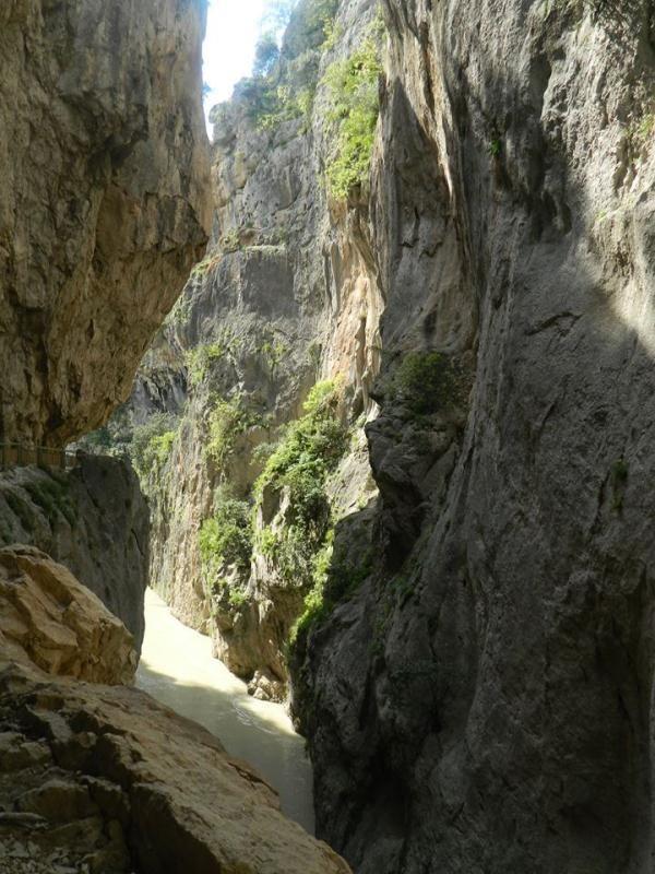 Turkuaz Doğa Ekibi Karaisali Kapıs Kanyon ve Alman Köprüsü Yürüyüşü   YAŞAM