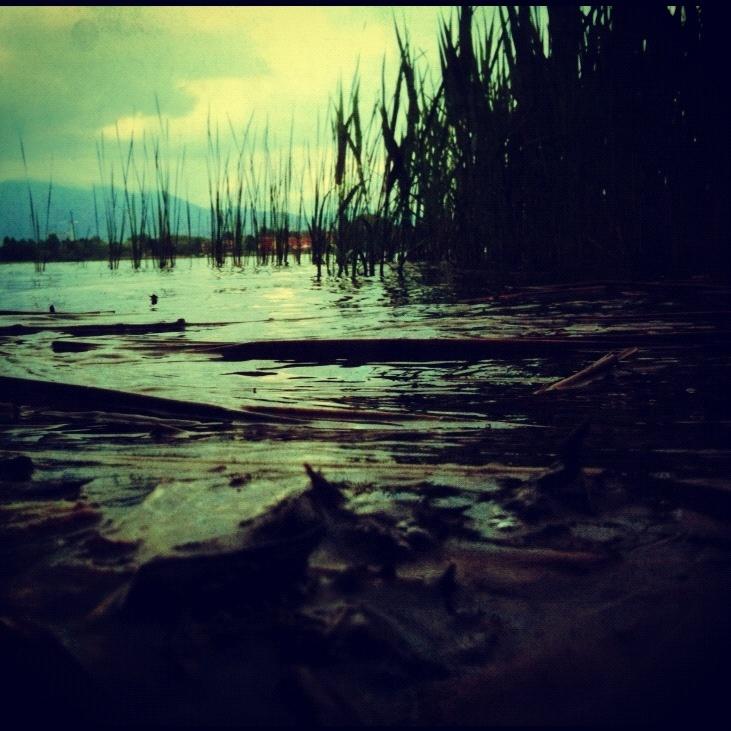 Luca fotografa il Lago di Comabbio