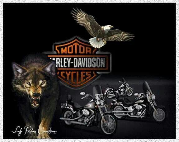 166 Best Images About Harley Davidson On Pinterest: 158 Best Images About Harley-Davidson Art On Pinterest