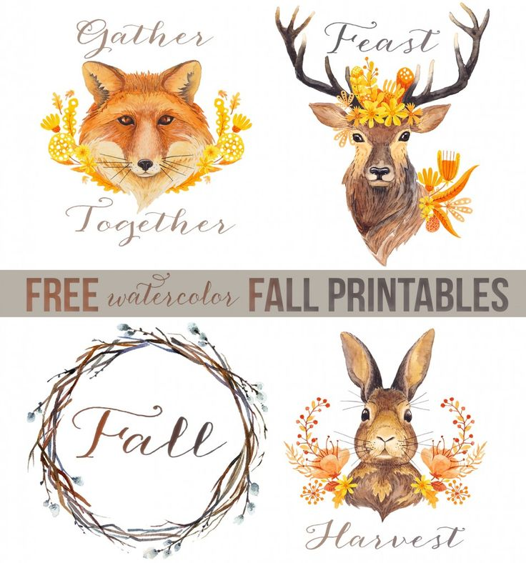 Woodland Watercolors + 35 Free Fall Printables - Unskinny Boppy