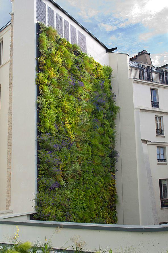 Mur végétal Rivoli - Paris