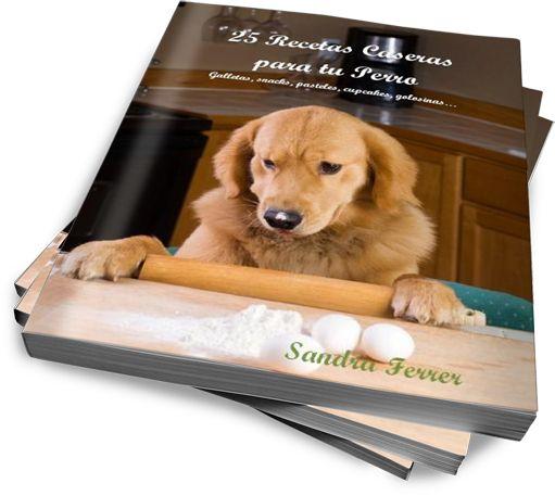 25 Recetas caseras para tu perro