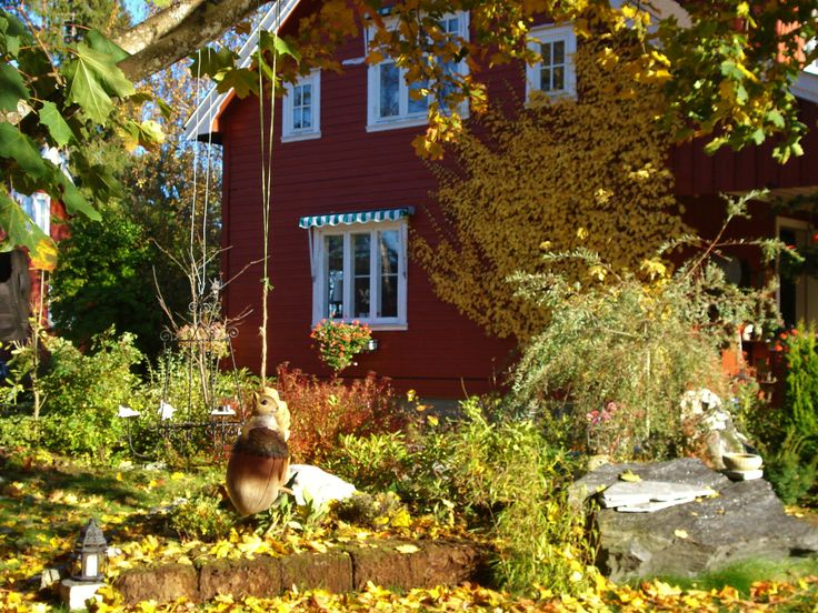 My house in autumn