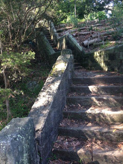 Callan Park Rozelle - Bush Track  -The Crooked Cottage