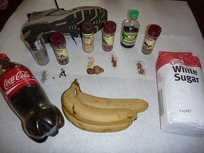 rainforest foods lesson