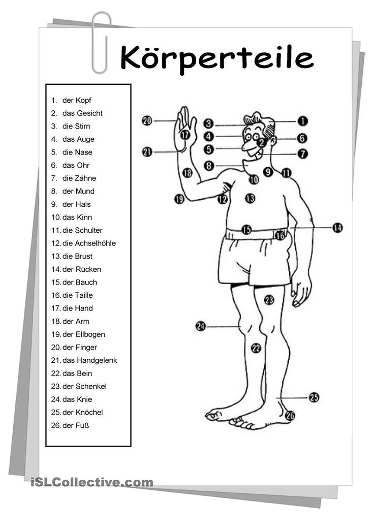 Körperteile | KOSTENLOSE DAF Arbeitsblätter