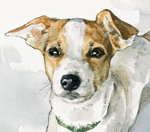 Custom Pet Portrait 8x10 Drawing with watercolor by studiotuesday