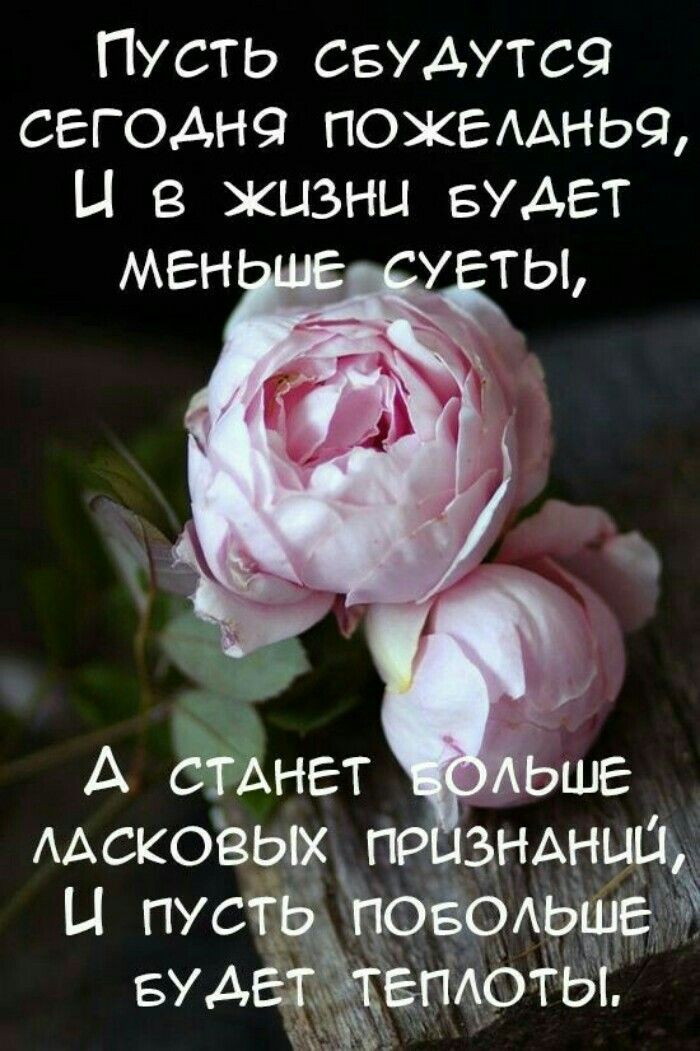 На фото пожелание цитата