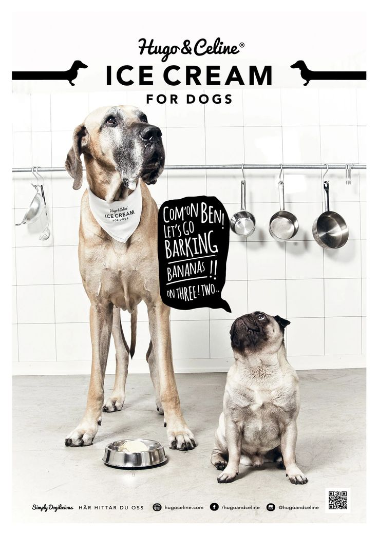 Hugo & Celine /Graphic Design /Poster
