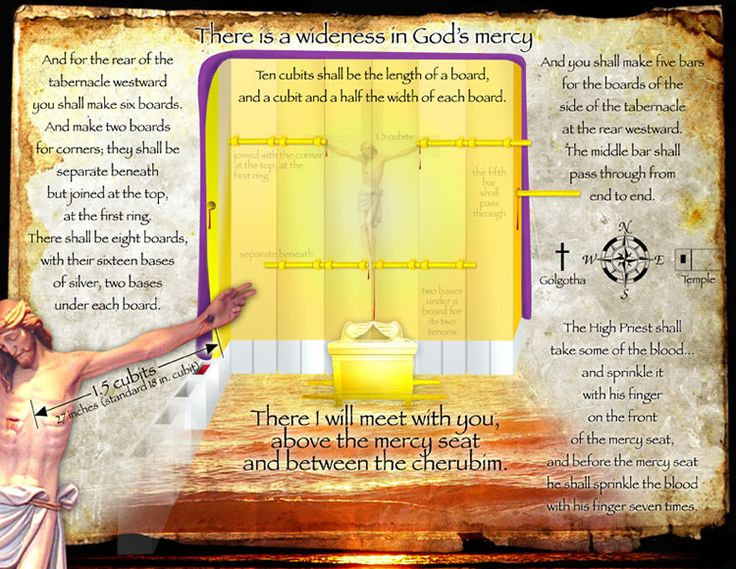 63 best the blueprint of genesis images on pinterest bible more ideas malvernweather Choice Image