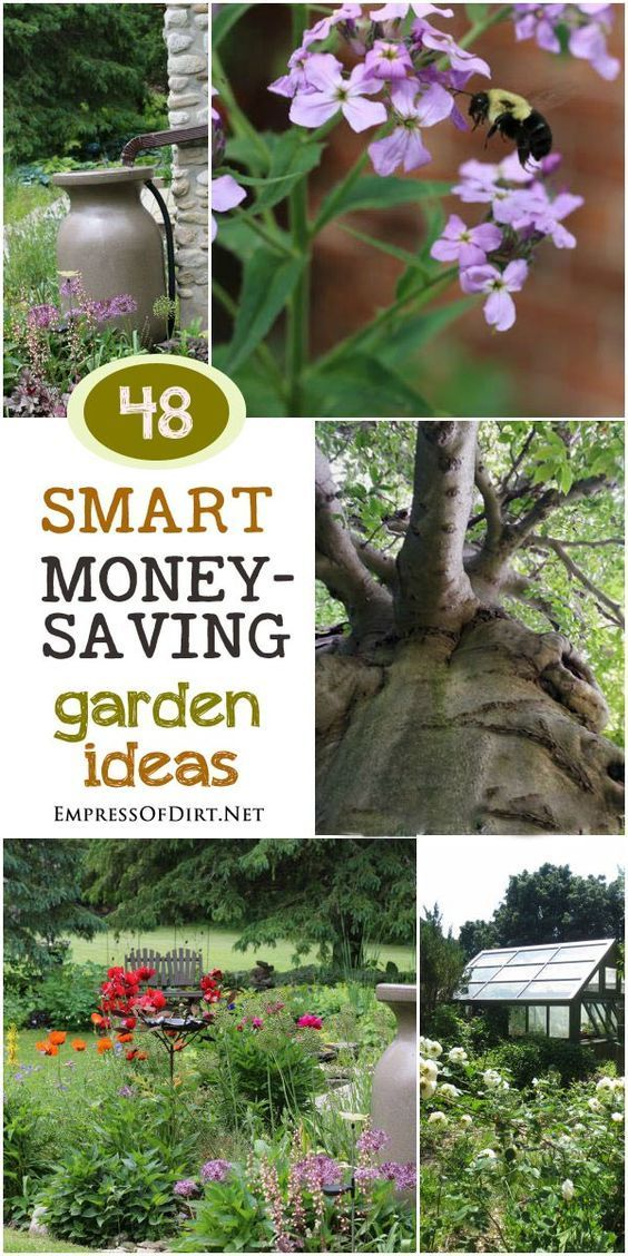 48 Smart, money-saving garden ideas for organic gardeners. See all the ways you can create the garden you want with perennials, trees, fruit, and veggies and make the most of the resources you have. What's good for the soil, water, earth, and air can be best for your wallet too.