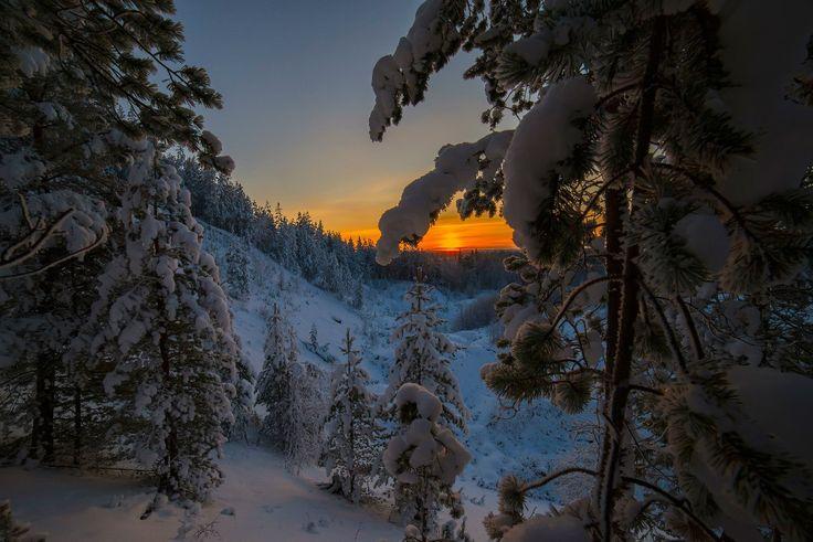 Прощание с солнцем Кольский полуостров ноябрь 2014